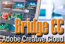 Adobe Bridge CC 2015 6.3.1.186 x86/x64 多语言中文版 -Adobe图像浏览与管理-联合优网