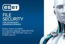 ESET File Security 6.4.12004.0 for Microsoft Windows Server 正式版-简体中文/繁体中文/英文-联合优网