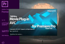 TMPGEnc Movie Plug-in AVC for Premiere Pro v1.0.13.13 注册版-91视频在线观看