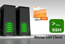 Bitvise SSH Client v8.15 + Portable 正式版-SSH和SFTP客户端-联合优网