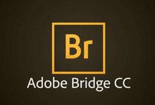 Adobe Bridge CC 2019 v9.0.0.204 x86/x64 Win/Mac 多语言中文正式版-联合优网