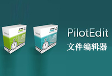 PilotEdit v12.3.0 多语言中文注册版-文件编辑器-联合优网