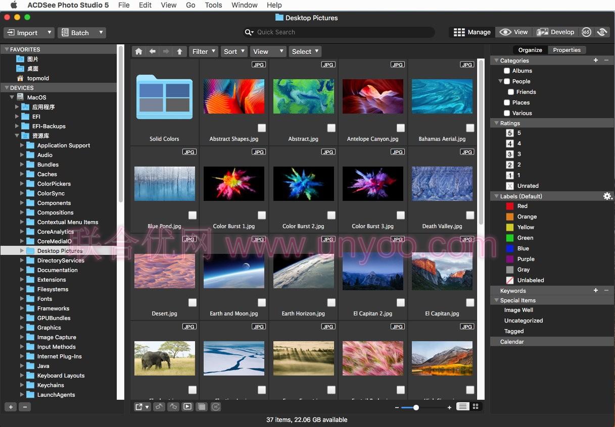 ACDSee Photo Studio for Mac v5.2 build 1151 注册版