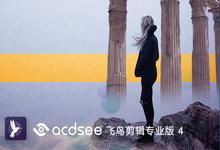 ACDSee Video Studio 4.0.0.893 正式注册版-飞鸟剪辑视频编辑-联合优网