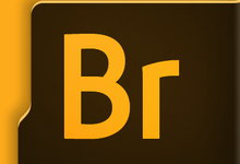 Adobe Bridge 2020 v10.0.0.124 多语言中文正式版-亚洲在线