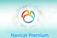 Navicat Premium v15.0.11 Win/Mac 注册版 - 简体中文/繁体中文/英文-联合优网