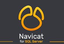 Navicat for SQL Server v15.0.10 企业注册版-简体中文/繁体中文/英文-联合优网