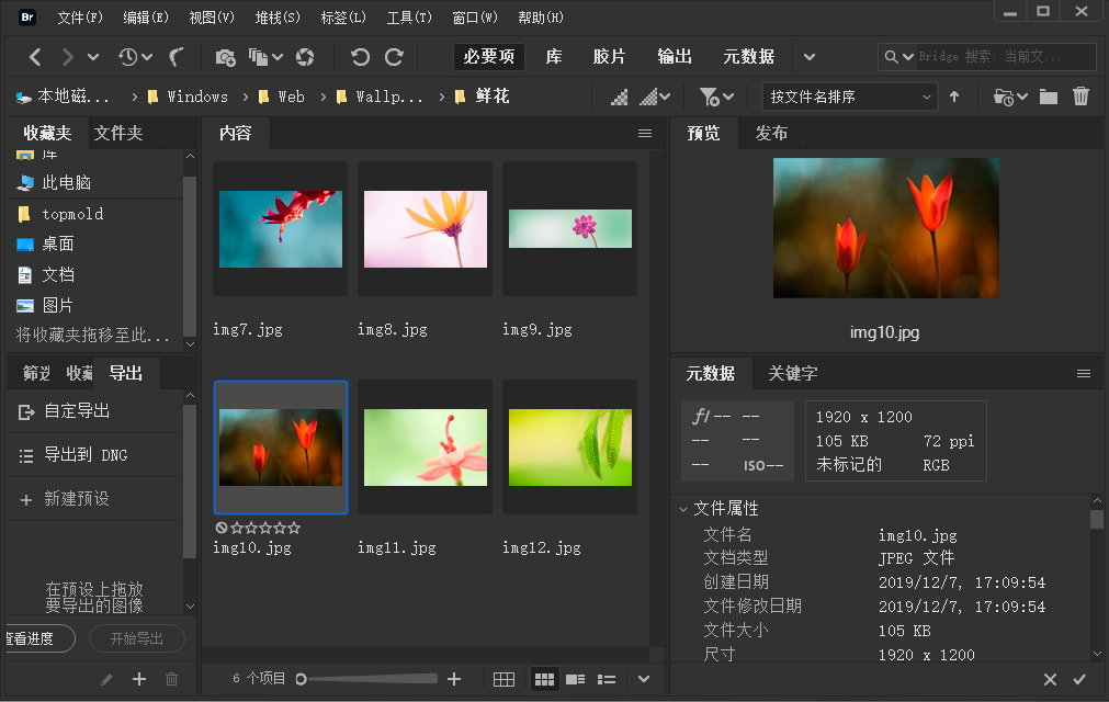 Adobe Bridge 2021 v11.0.1.109 x64 Multilingual 多语言中文版