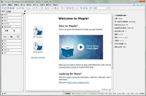 Maplesoft Maple 2021.0 Multilingual 多语言中文注册版